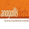Anagallis Herbs