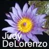 Judy DeLorenzo